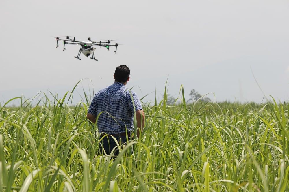 4 utilidades do uso de drones na agricultura