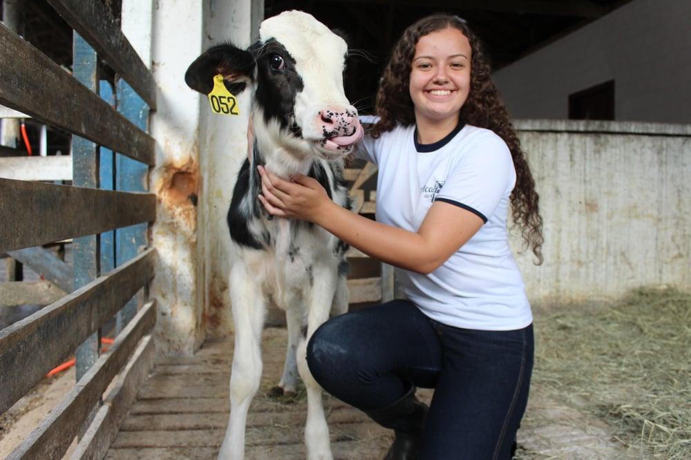 Fundação Roge Curso Técnico em Agropecuária focado na bovinocultura