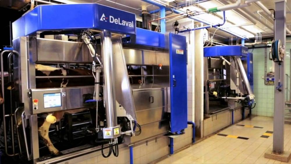 Tecnologias no sistema de produção leiteira – Ordenha robotizada