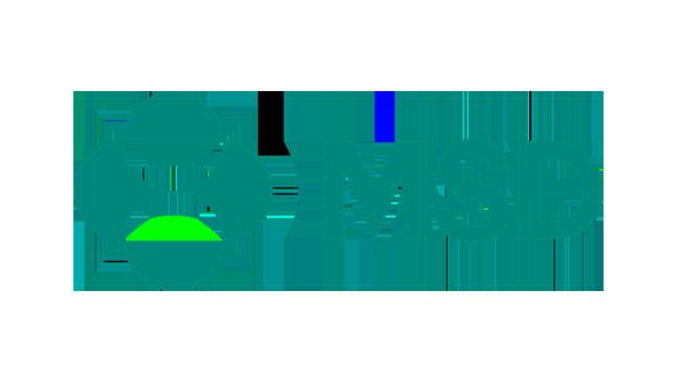 msd 1-1