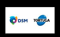 DSM-1