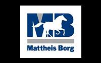 Mattheis_borg-1